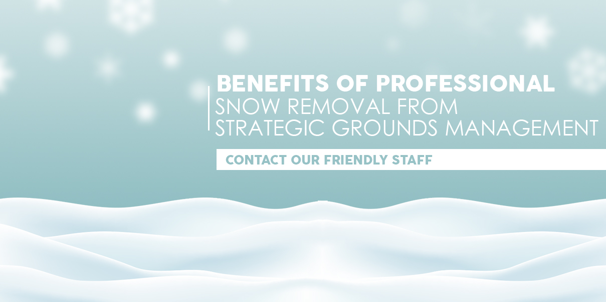 Snow & Ice Removal Benefits