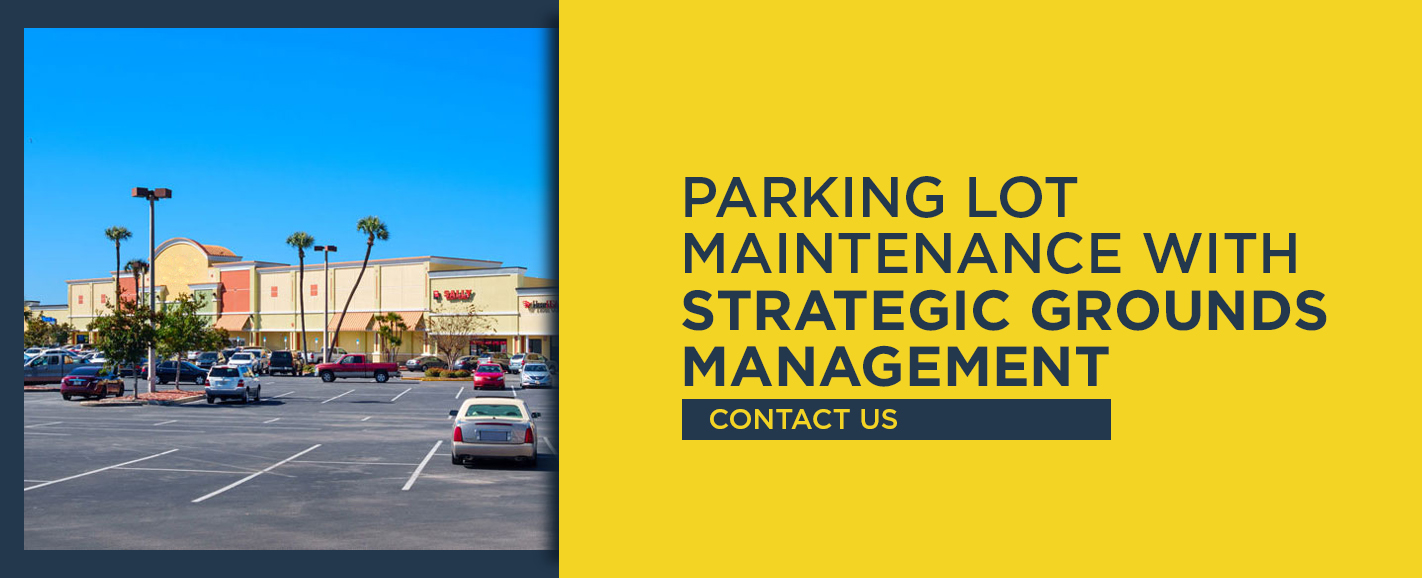 Parking Lot Maintenance With Strategic Grounds Management