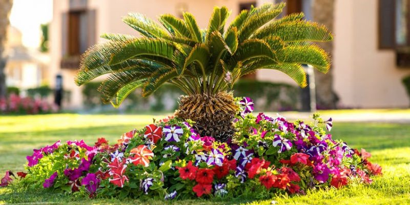 commercial landscaping and exterior maintenance